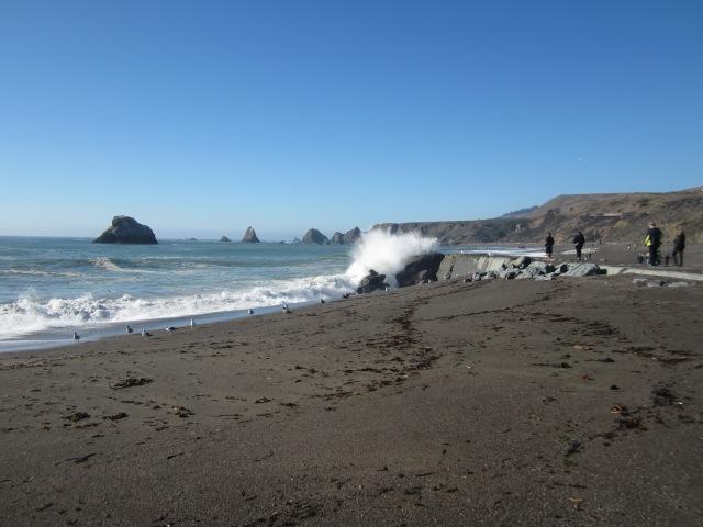 Waves Crashing at Goat Rock Beach